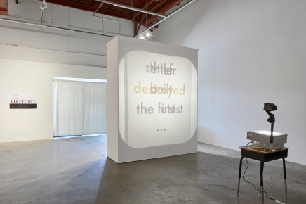 Vocabulary Lesson, 2018. Regional Fictions exhibition, Mass Gallery, Austin, TX. Photo by Andrea Calo.